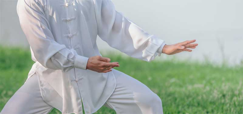 Is Jiulong Baguazhang Kung Fu or Tai Chi